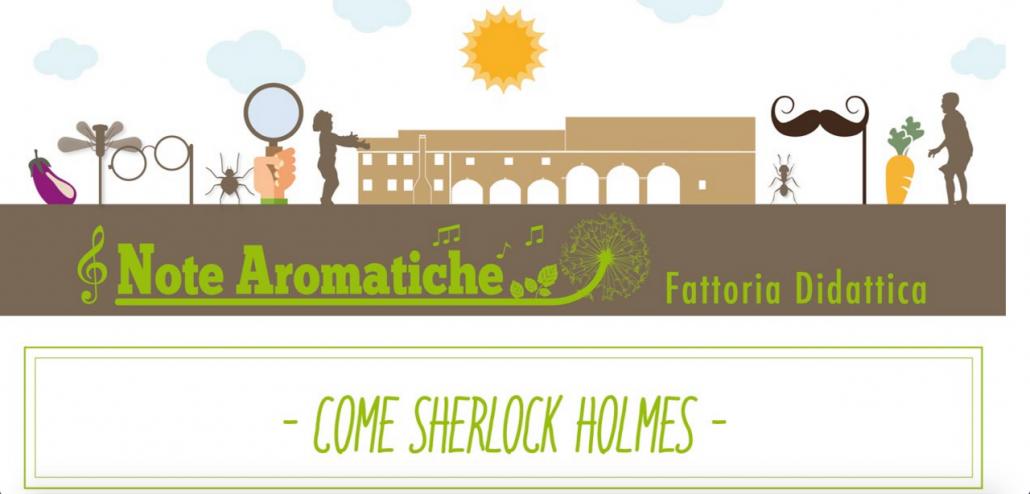 Come Sherlock Holmes, biodiversità del suolo